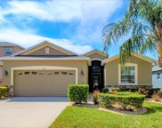 13811 Chalk Hill Place, Riverview image