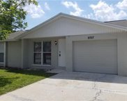 9707 Rushwood Court, Tampa image