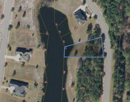TBD Lot #79 Whooping Crane Dr., Conway image