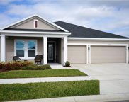 17992 Passionflower Circle, Clermont image