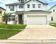 11161 Golden Silence Drive, Riverview image