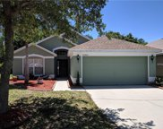 13363 Early Frost Circle, Orlando image