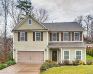 8238  Cool Spring Court, Indian Land image