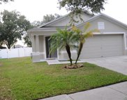 18176 Canal Pointe Street, Tampa image