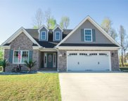 217 Grassy Meadow Ct., Aynor image