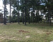 946 Fiddlehead Way, Myrtle Beach image