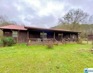 5300 Lee Rd, Pell City image