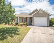 1710 Pepperwood Way, Leland image