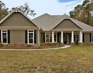 6597 Pepper Grass Trail, Ravenel image