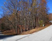 00 Indian Pipe Trail, Landrum image