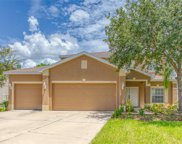 7716 Dragon Fly Loop, Gibsonton image