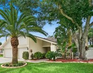 12025 Steppingstone Boulevard, Tampa image