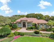 11469 Willow Gardens Drive, Windermere image