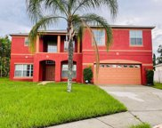 420 Marlberry Leaf Court, Kissimmee image