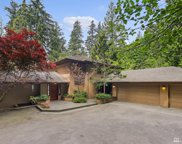 18115 214th Ave NE, Woodinville image