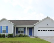 201 Red Carnation Drive, Holly Ridge image