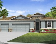6408 Devesta Loop, Palmetto image