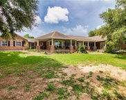 8021 Lake Nellie Road, Clermont image