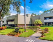 36750 N Us Highway 19 Unit 09117, Palm Harbor image
