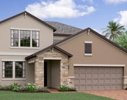 13220 Satin Lily Drive, Riverview image