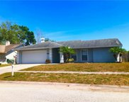 6531 Seafairer Drive, Tampa image