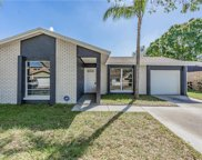 9514 Letterstone Court, Tampa image
