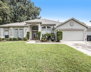 514 Crowned Eagle Court, Valrico image