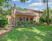 2643 Fiddlestick Circle, Lutz image