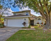 4704 Cresson Court, Tampa image