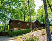 100 Cahaba Forest Drive, Trussville image
