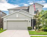17007 Peaceful Valley Drive, Wimauma image
