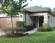 9332 Sapphireberry Ln, Riverview image