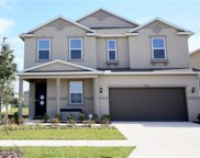 10515 Laguna Plains Drive, Riverview image