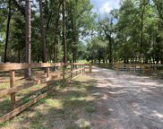 County Road 44a, Eustis image