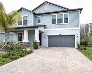 16312 Hyde Manor Drive, Tampa image