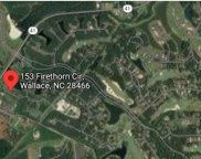 153 Firethorn Circle, Wallace image