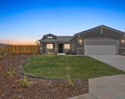 4401 Seedling, Bakersfield image