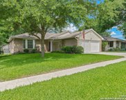 10915 Forest Farm, Live Oak image