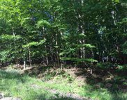 Lot 54 Cherokee Trail, Kewadin image