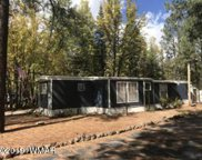 5314 Blue Ridge Loop, Pinetop image
