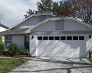2269 Springrain Drive, Clearwater image