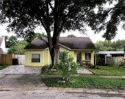 12320 Cloverstone Drive, Tampa image