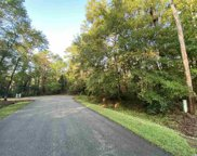 425 Otter Run Rd., Pawleys Island image