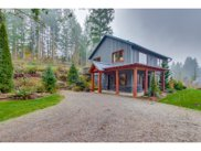 17725 NE BAKER CREEK  RD, Brush Prairie image