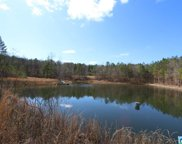 Daileys Chapel Rd Unit 197+/- Acres, Oneonta image