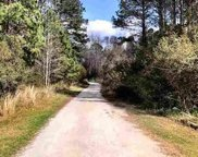 Lot A E Bear Grass Rd., Longs image