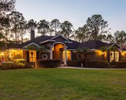 17402 Brown Road, Odessa image