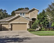 3324 Anna George Drive, Valrico image