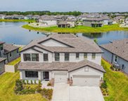31249 Palm Song Place, Wesley Chapel image