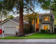 1204 Robyn Drive, Danville image